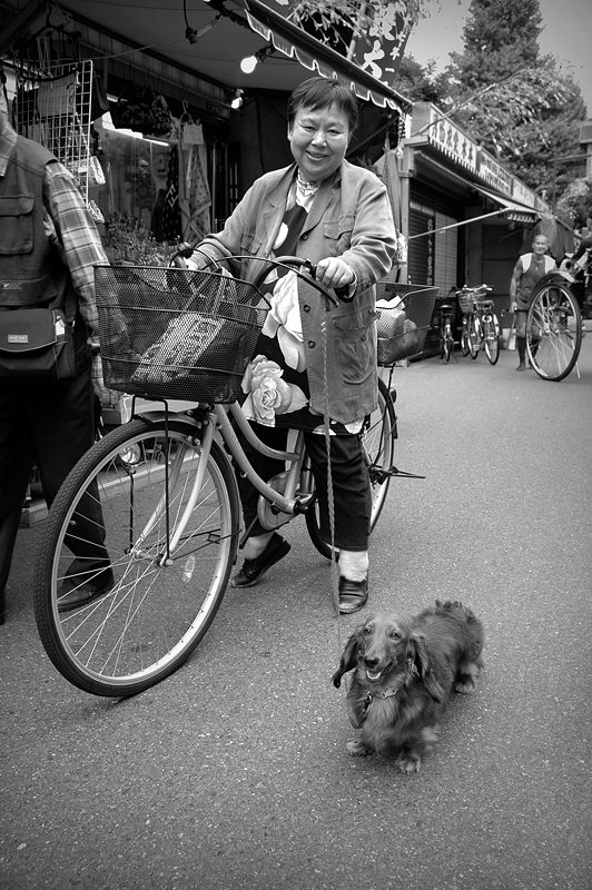Personal: Biking with the Dog