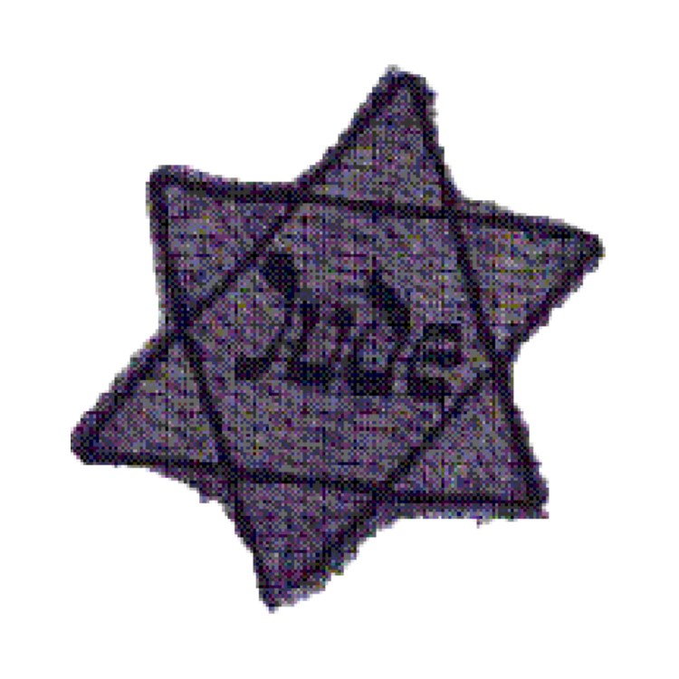 Jews were forced to wear this star on their clothing, to shame and harass them
