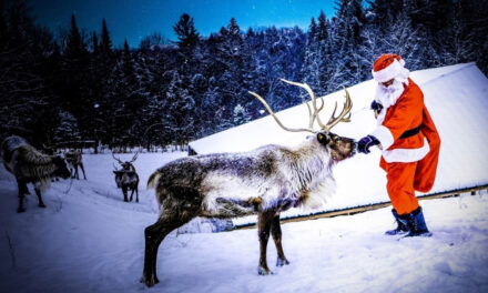 5 Covid-Safe Activities to do Around Montreal this Winter