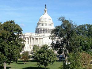 US Capitol (WMassP&I)