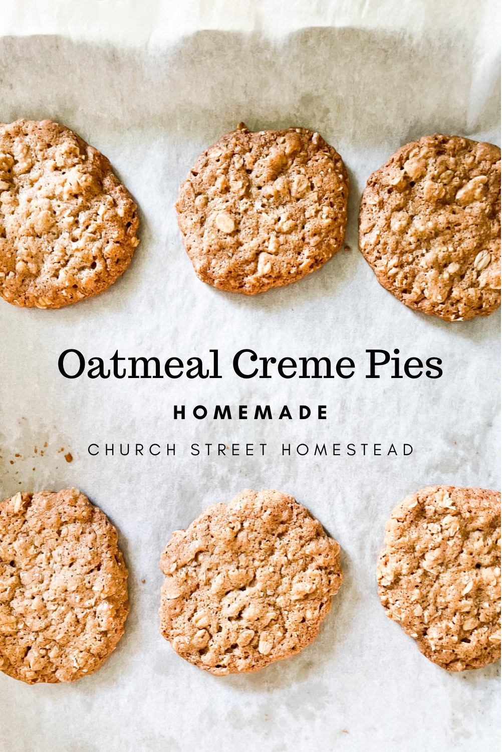 oatmeal cookies on parchment paper - pinterest pi