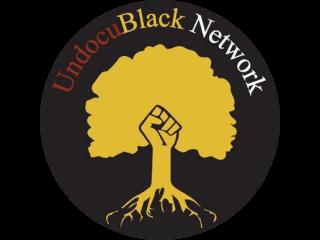 logo-08-the-undocublack-network