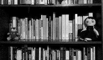 El mantenimiento de una biblioteca casera