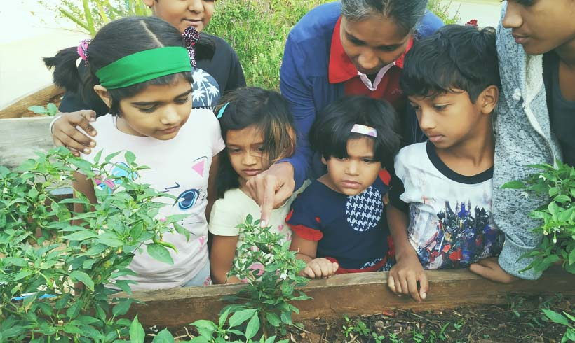 What is an organic garden ? Why do children need to know about gardening ?