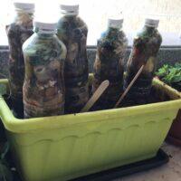 Composting is addictive