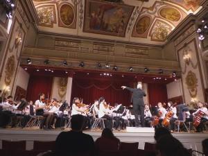 Euro Haydn Hall_3