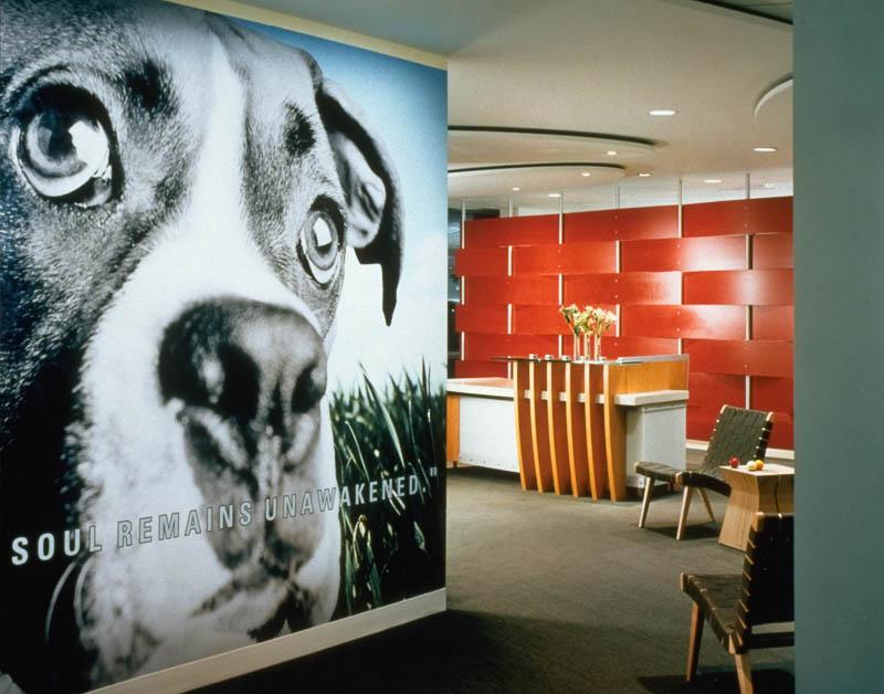 Pet Care Company