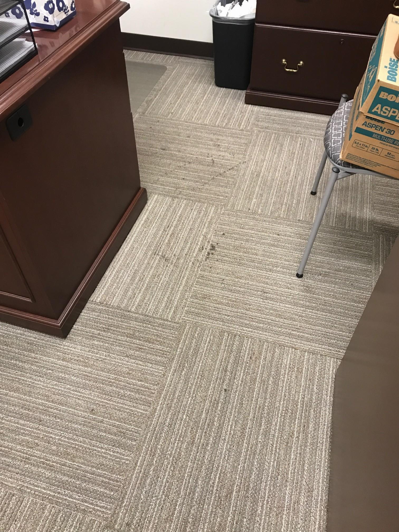 Carpet tiles 3