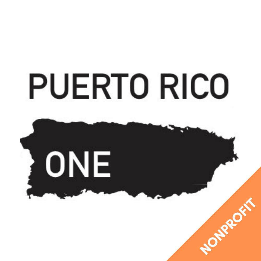 Advisor for Puerto Rico One