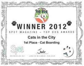 Spot Magazine Cat Boarding Award