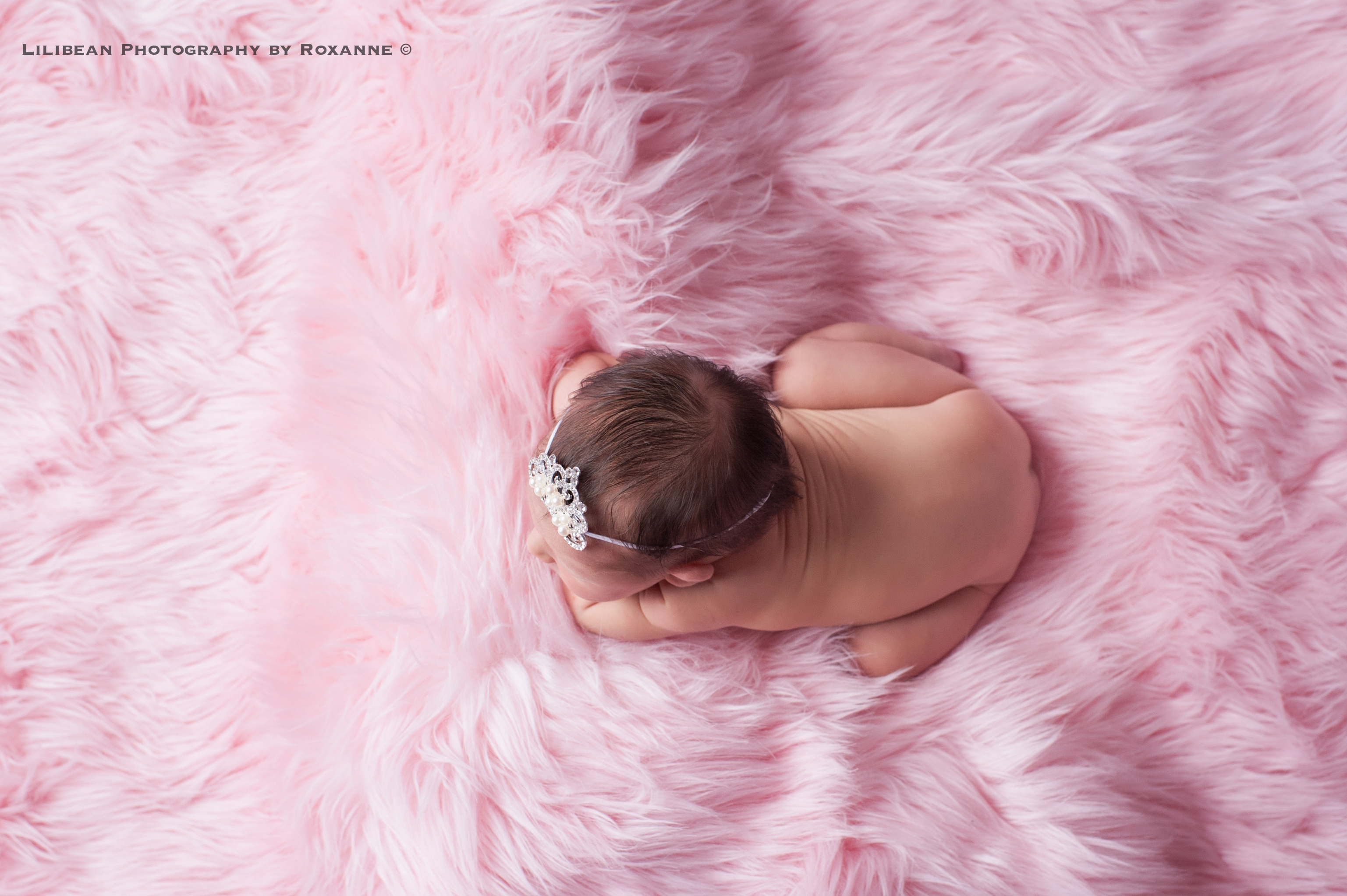 South Florida Baby Photographer Aventura Sunny Isles Surfside Hallandale Plantation North Miami Infant Photos Lilibean5-2