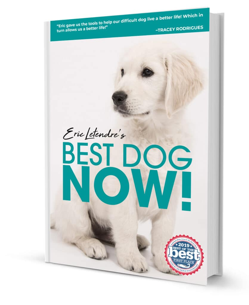 BEST DOG NOW! EBOOK