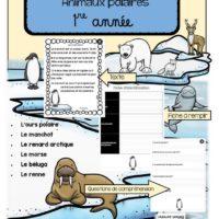 compréhension-de-textes-1re-année-animaux-polaires-page-1