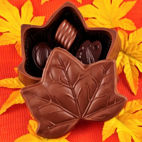 Chocolate Maple Leaf Box