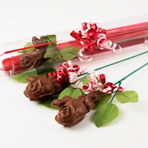 Single Long Stem Chocolate Rose