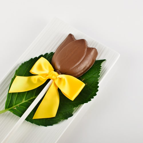 Chocolate Tulip Lolly