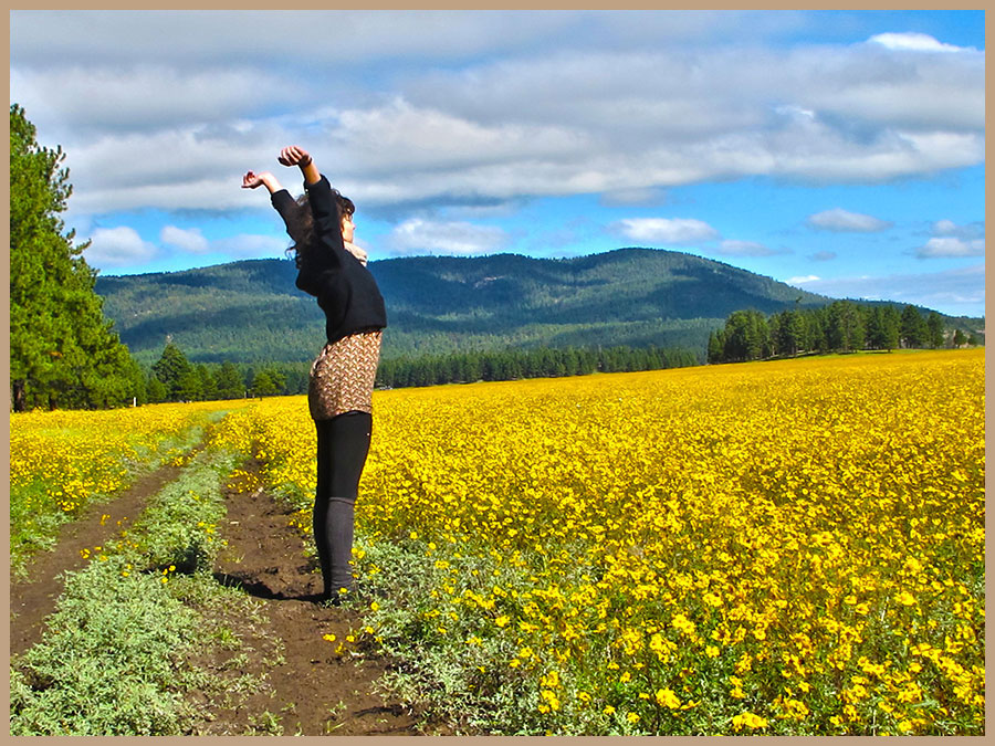 Young lady lifting her arms to the sky while standing in a field of sunflowers