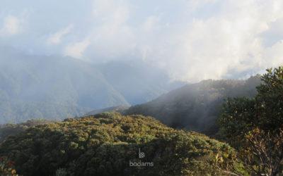 Costa Rica: Nature & Nurture