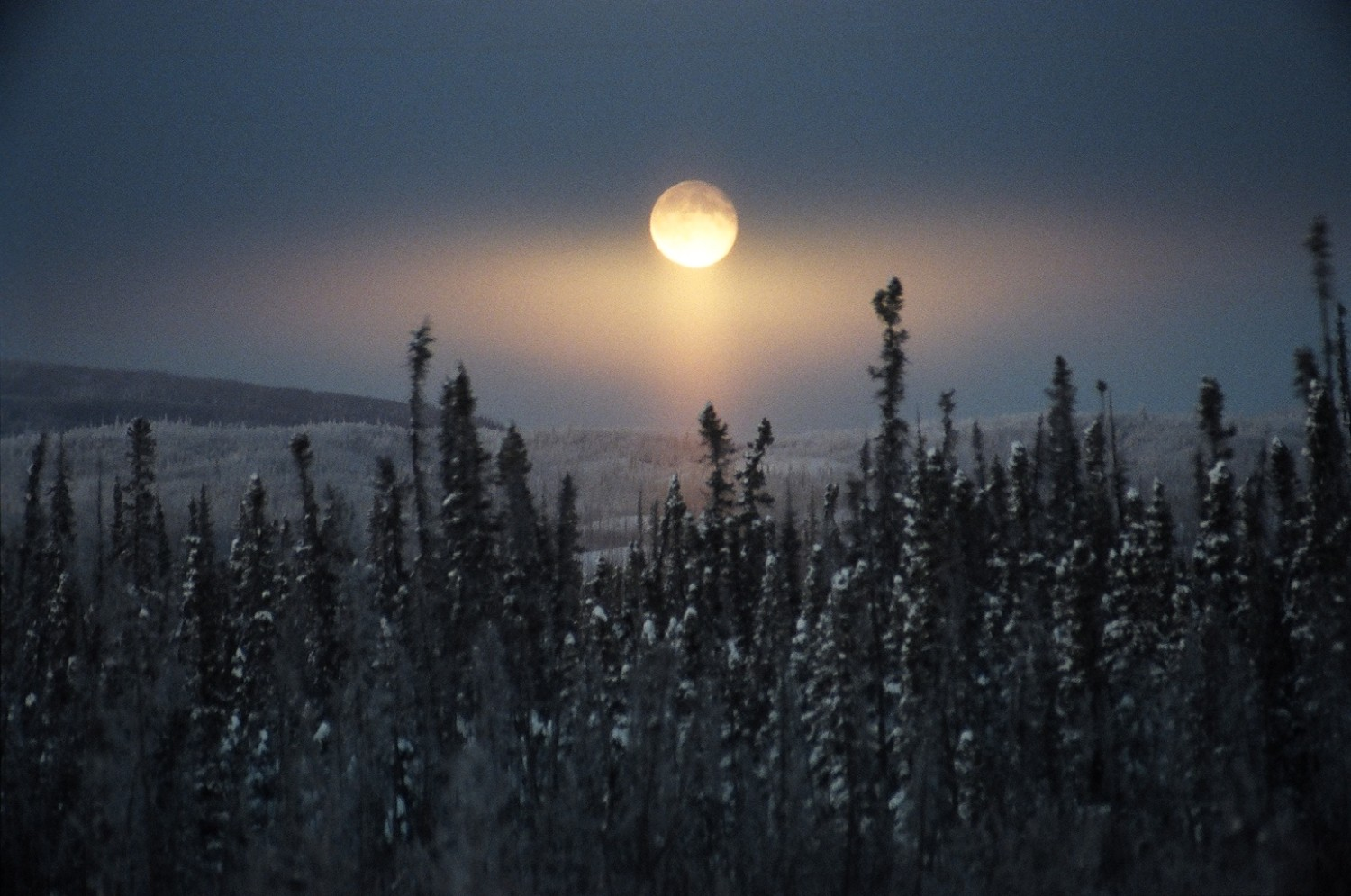 November: The Beaver Moon At this time of year the beavers are busy preparing for winter, and it's time to set beaver traps and secure a store of warm fur before the swamps freeze over. Some tribes called this the Frosty Moon.