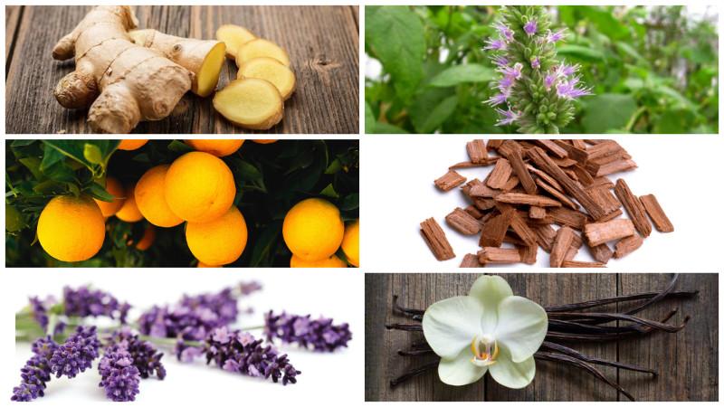 everything-soulful- Essential oils- Ginger-Lavender- Sandalwood