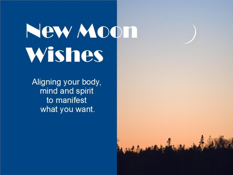 moonwishes