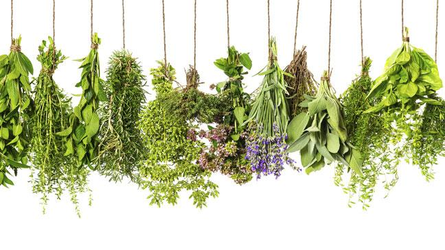 everything_soulful_mama_sana_herbs