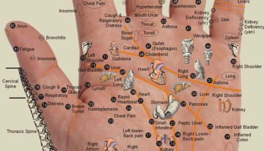 Healing Your Body Through Your Hands: Acupressure Points