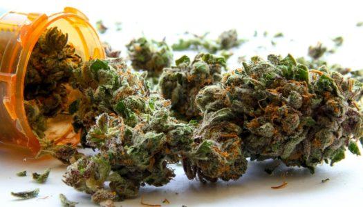 Enlightening Marijuana Medicine Facts