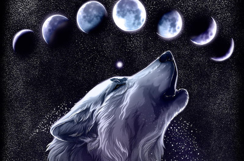 everything_soulful_wolf_moon_4