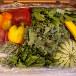 CSA Box Sample Underwood Farms