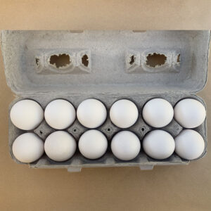 Dozen Eggs White