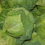 vgreen_cabbage