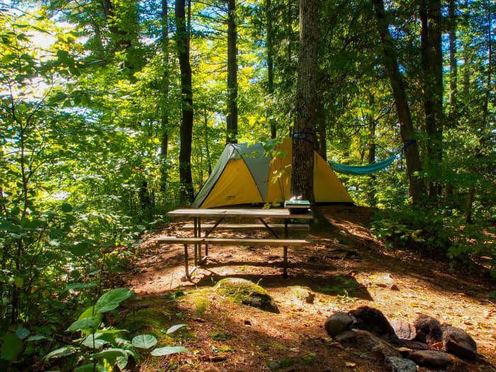 campsite with yellow tent and picnic table surrounded by trees