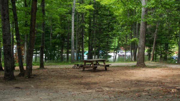 Campsite on the beach! Serviced and generous size for travel trailer/RV or tent