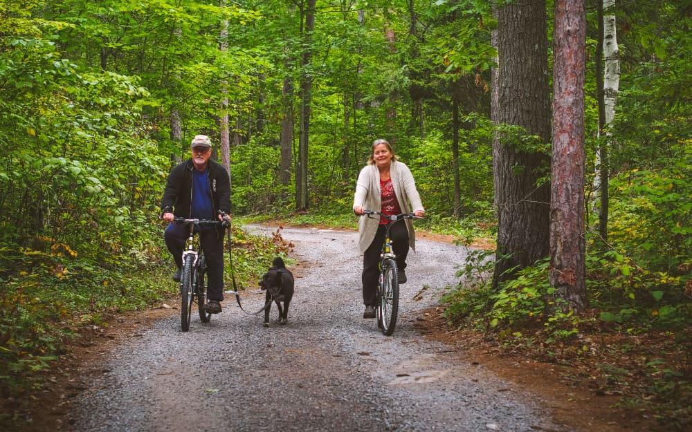 couple with dog riding bicycles in campground