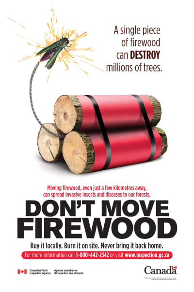 warning to campers not to bring firewood into the park