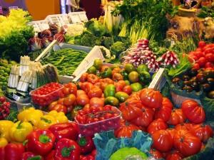 Variety of Wonderful Food Choices