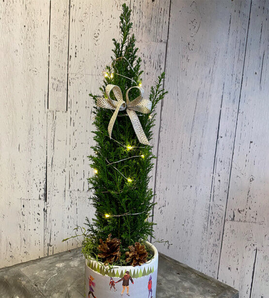 an image of a Christmas tree arrangement