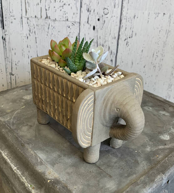 an image of a pop in the shape of an elephant with assorted plants inside
