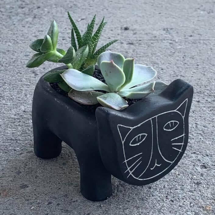 two succulent plants inside a pot shaped like a cat