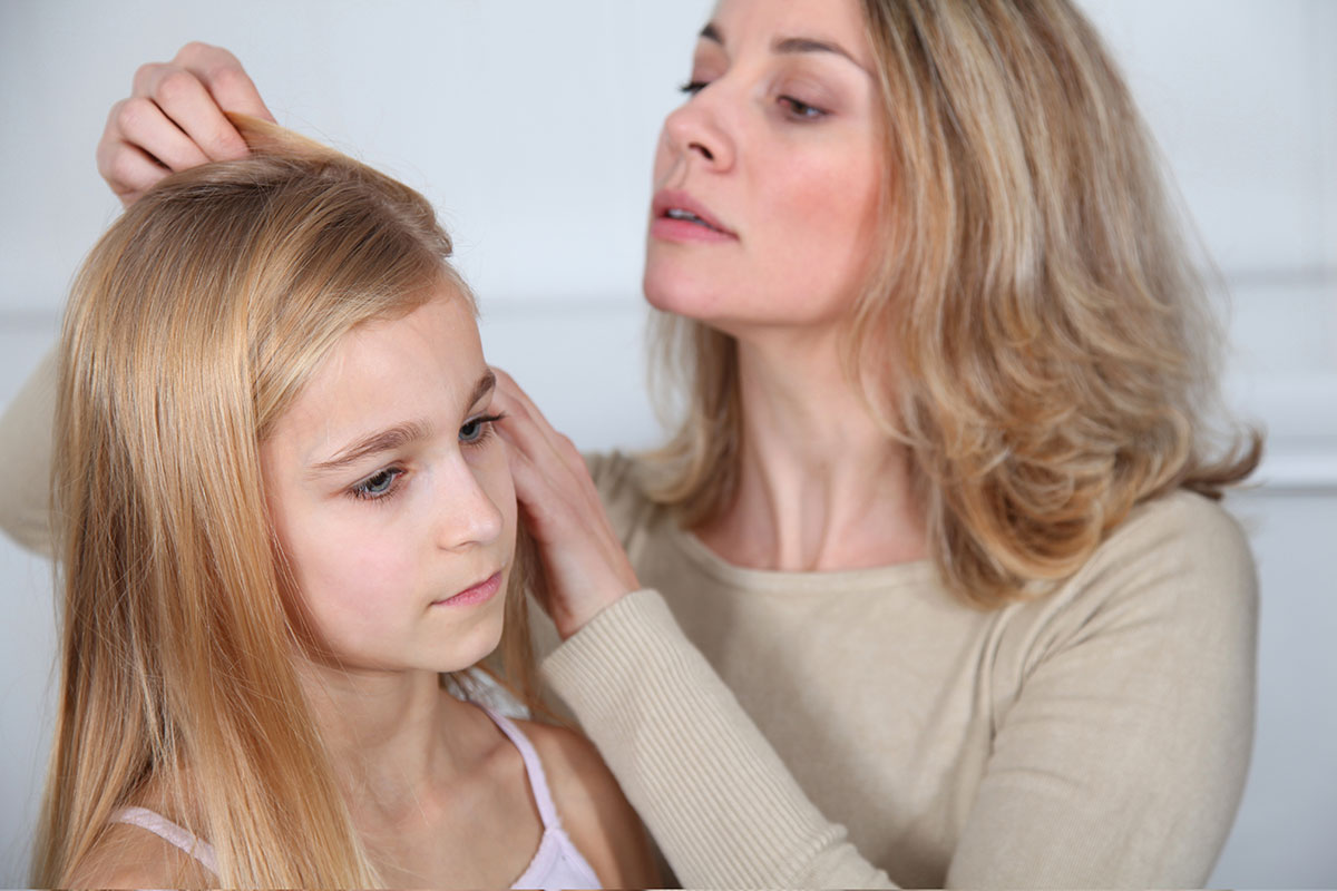 Plagued by Head Lice Prepare a Solid Plan of Attack
