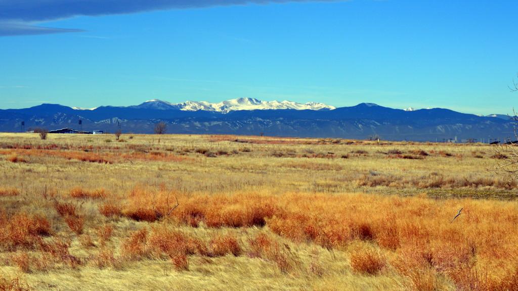 Property Insurance Claim Colorado