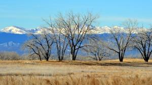 Colorado Mtns 10