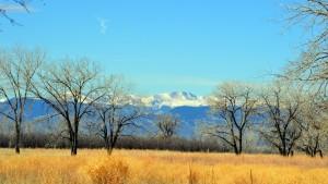 Colorado Mtns 7