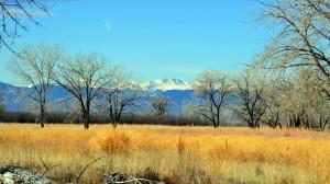 Colorado Mtns 6