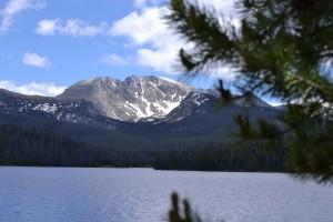 Colorado lake and pine