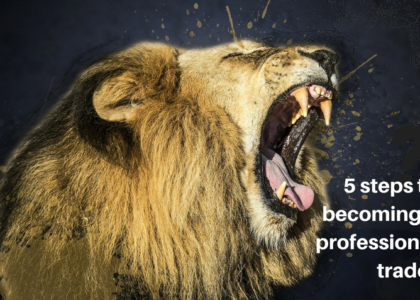 Quick guide: 5 steps to becoming a professional trader