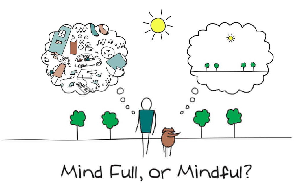 Mindful, or mind ful