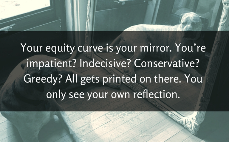 Your equity curve is your mirror. You only see your own reflection.
