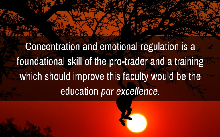 Concentration and emotional regulation is a foundational skill of the pro-trader and a training which should improve this faculty would be the education par excellence